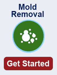 mold remediation in Virginia Beach TN